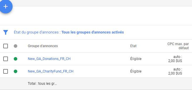 Exemple Groupe d'annonce Google Ads Grants